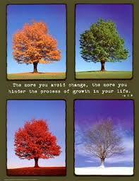 Seasons Change Quotes Amazing Seasons Of Change In Life Quote