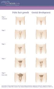 Stages Of Puberty In Males Chart 48 Extraordinary Puberty Chart For Guys