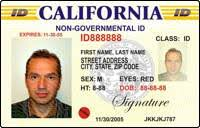 - License Driving International Permit Drivers