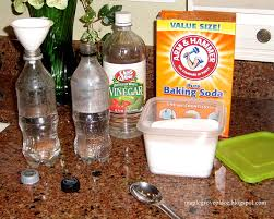 wash your hair with baking soda and vinegar and make your own toothpaste and deodorant