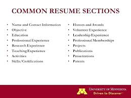 Resume Leadership Skills Examples Tomyumtumweb Com