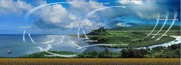 Круговорот воды в природе Роль воды в природе Распределение воды