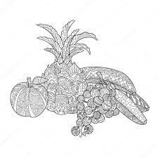 Fruit Kleurplaat Boek Voor Volwassenen Vector Stockvector