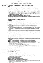 Financial Senior Consultant Resume Samples Velvet Jobs Change