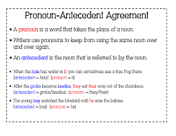 Pronoun Antecedent Agreement 6th Grade English With Mr T Pronoun Antecedent Agreement Part 2