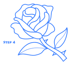 Small Picture Rose Drawing Lesson