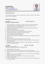 How Will Great Resume Examples Be In The Future Great