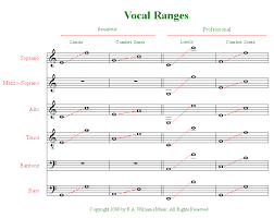 This Chart Helped Me Figure Out Im An Alto What Are You