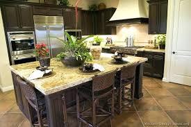 Kitchen Ideas Dark Cabinets Cool Decorating Design