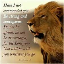 Image result for pictures of courage biblical