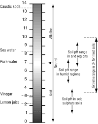 Soil Ph   Environment, Land And Water   Queensland Government