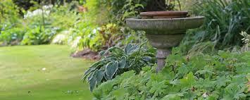 Bird Bath Garden Design Garden Design Faqs