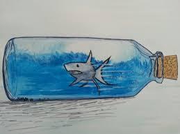 cute shark drawing tumblr. Fine Shark Sharks Are Cute Too With Cute Shark Drawing Tumblr H