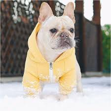 French Bulldog Hoodies <b>Pet Dog Clothes for</b> Small Dogs Pets ...