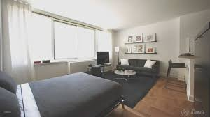 studio apartment furniture layout. Apartment Bedroom Ideas Studio Small Apt Decorating Furniture Layout N