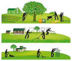 Image result for clipart yard maintenance