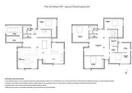 plan maison contemporaine niveaux 1 100e