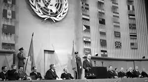 Image result for universal Declaration Of Human Right