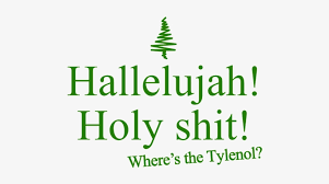 It's christmas time and the griswolds are preparing for a family seasonal celebration, but things never run smoothly for clark, his wife ellen and their two kids. Where S The Tylenol Christmas Vacation Quote Harper Collins Logo Svg Transparent Png 500x500 Free Download On Nicepng