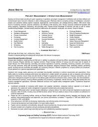Project Manager Resume Examples Project Manager Resume Sample Doc