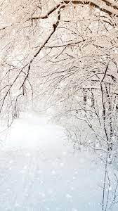 Winter nature, trees, white snow ...