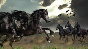wild horses mustang wallpaper. Wild Horses Live Wallpaper Screenshot 38402400 And Mustang