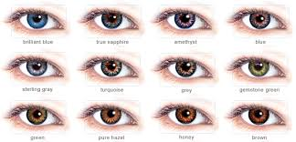 Freshlook Colorblends Dailies Contacts Eye Color Chart