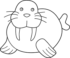 Small Picture Cute Walrus Coloring Pagewalrus Printable Coloring Pages Free