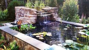 Backyard Ponds What Should You Build Backyard Ponds And Waterfalls To Make It