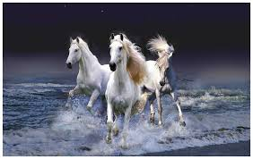Cheap Horse Posters Horse Poster Horse Posters Running Horse Poster Horse Wall Poster Horse Poster For Room