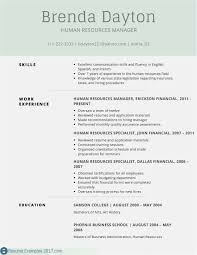 Free 53 Resume Template Psd New Professional Template Example