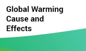 good cause and effect essay examples from scoobydomyessay global warming cause and effects essay