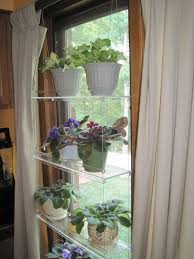 indoor window shelves for plants - Google Search