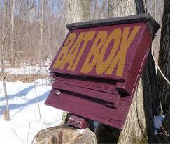 bat box with pallets
