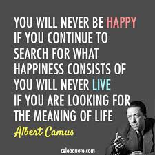 Albert Camus Quotes Gorgeous Albert Camus Quote About Meaning Of Life Life Happy Happiness CQ