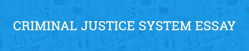 criminal justice system essay example