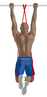 Pull Up Band Assistance Chart Pull Up Exercise Guide Progression Exercises Hints And