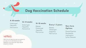 Puppy Vaccination Chart Pdf Www Bedowntowndaytona Com