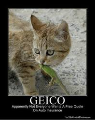 geico appaly not everyone wants a free quote on auto insurance