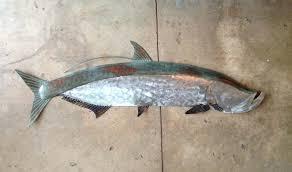 fish wall sculptures metal art tarpon tropical coastal beach metal fish wall art