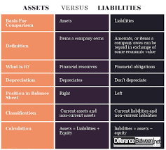 Assets Liabilities Equity Chart Differences Between Assets And Liabilities Difference Between