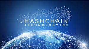 Image result for hashchain technology inc