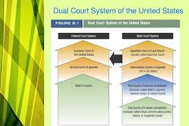Ppt Basic Criminal Constitutional Law The Court System