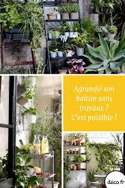 Rien de tel que des plantes vertes pour transformer votre petit balcon en  vraie bulle d