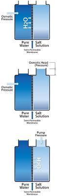 Whats The Difference Between Ro And Di Water Purification