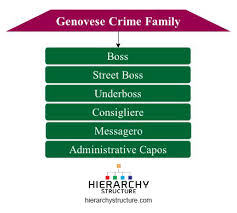 Genovese Crime Family Chart 2015 Hierarchy Of Genovese Crime Family Chart Hierarchy Structure