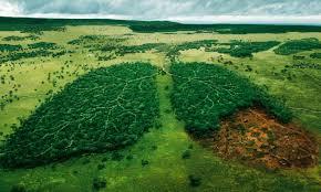Image result for κλιματική αλλαγή
