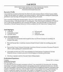 Field Sales Executive Resume Sample Executive Resumes