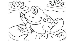 tree frog template pumpkin life cycle coloring page frog coloring picture tree frog