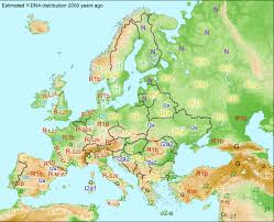 maternal dna in europe genetic